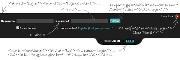 HTML structure of the login panel